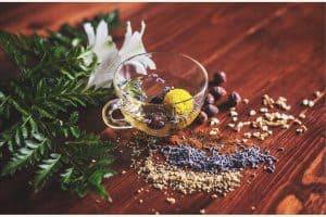 naturalne zioła na obniżenie cukru we krwi